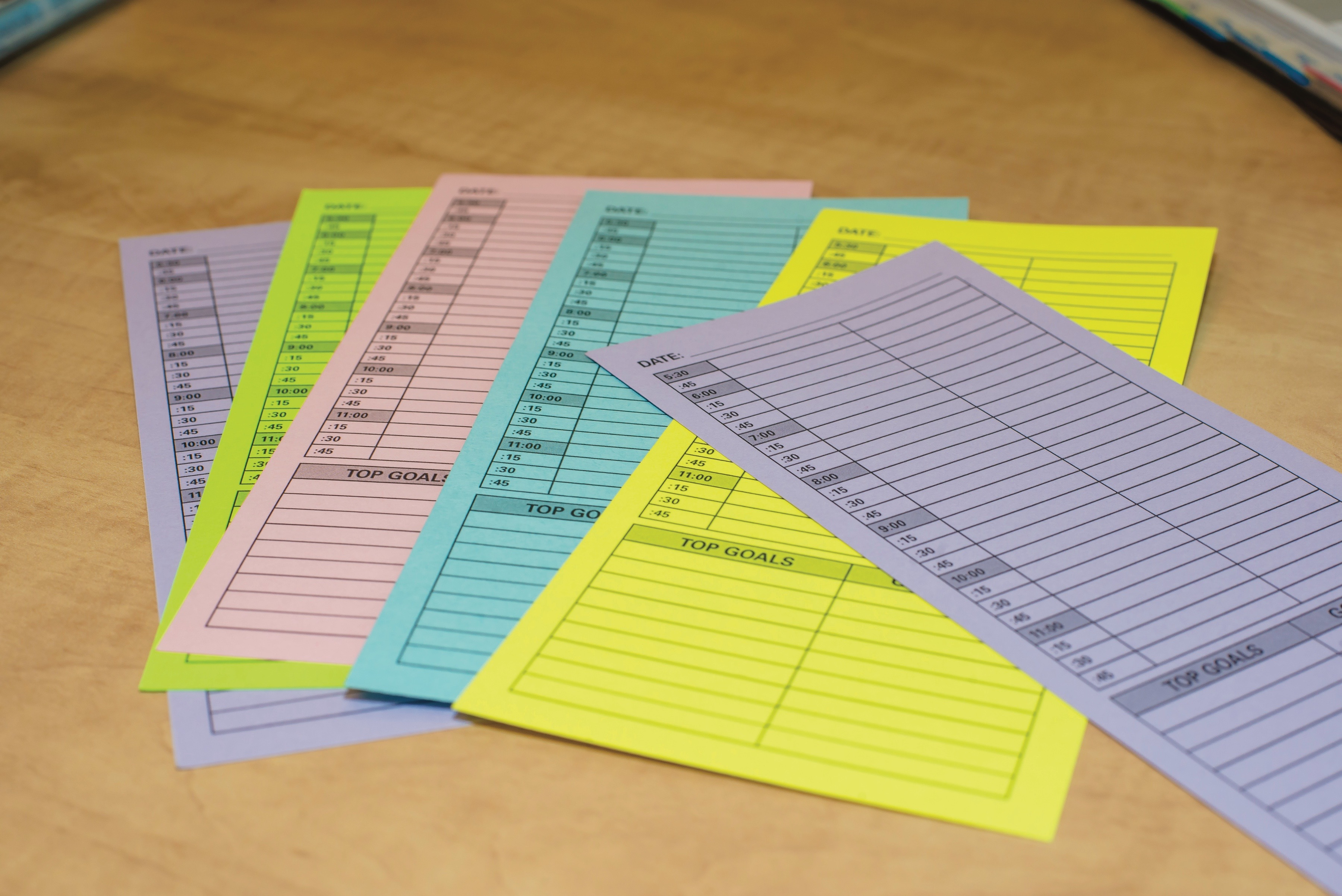 Cathy Lewis 15-Minute Planners, organization