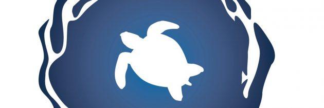 Virginia Aquarium Earns 4-Star Rating From Charity Navigator