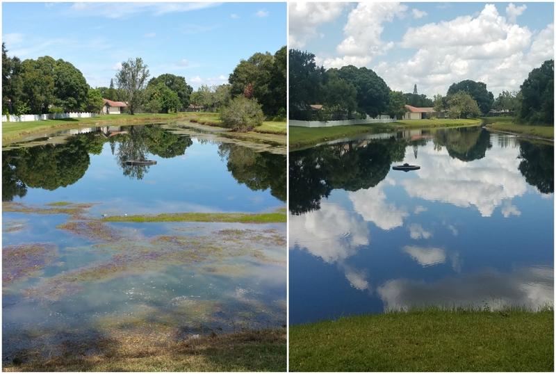Dan Hunt, SOLitude Lake Management, Fort Myers, Fla