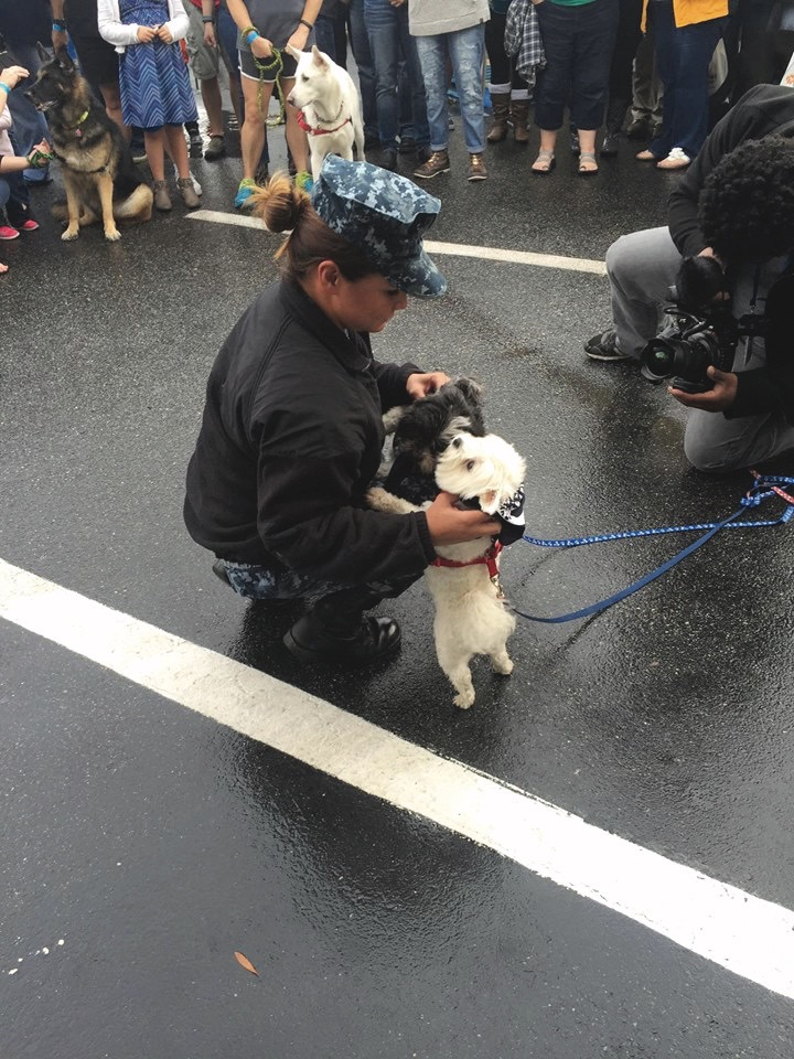 Community Impact Awards, Hampton Roads, Wasserhund Brewing, Dogs on Deployment