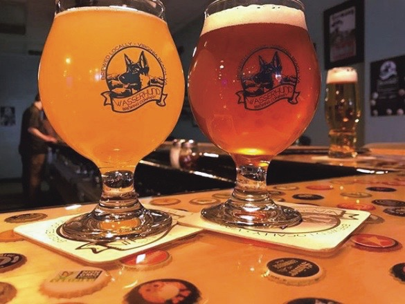 Wasserhund Brewing, craft beer, cause of the month, Community Impact Awards, Hampton Roads