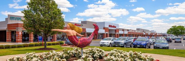 Wheeler Real Estate Investment Trust, Inc. Purchases JANAF Shopping Yard in Norfolk