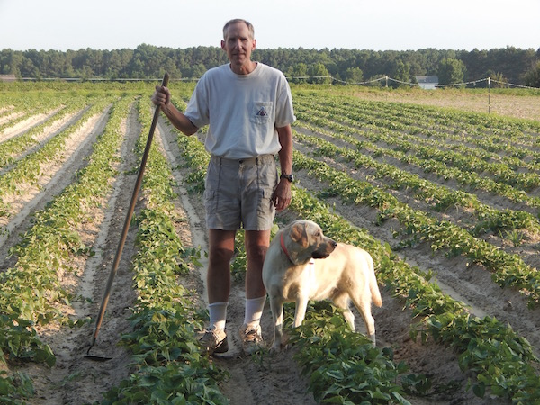 Jerry Greene of Orapeake Farms