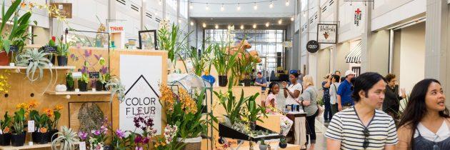 Selden Market Wins Highest Pinnacle Award from International Downtown Association