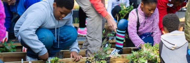 Mariners' Museum Awarded Education Grant for Pollinator Garden